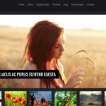 Nové WordPress šablony zdarma ke stažení