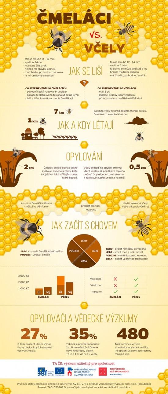 Co to je infografika a jak ji vytvořit?